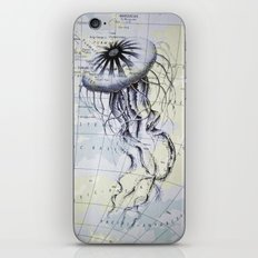 Jellyfish in the South Pacific iPhone & iPod Skin