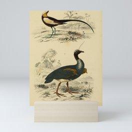D'Orbigny - Universal Dictionary of Natural History; Birds (1849): 10 Jacana; Horned Screamer Mini Art Print