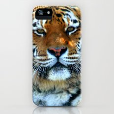 Sumatran Tiger - Panthera Tigris Sumatrae Slim Case iPhone (5, 5s)