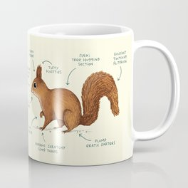 Anatomy of a Squirrel Coffee Mug