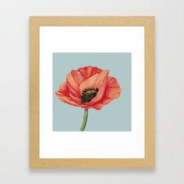 A Poppy For You Framed Art Print