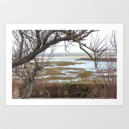 The tree before the water Art Print
