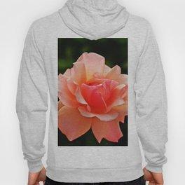 Pink Rose Blooming Hoody