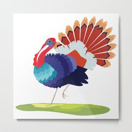 Turkey, turkey Metal Print