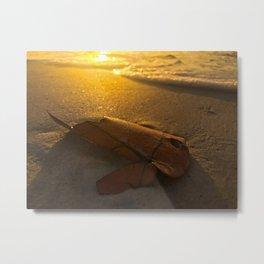 Leaf in the ocean sunshine Metal Print