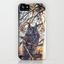 Greathorned owl iPhone Case