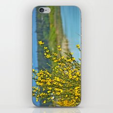 beautiful bc iPhone & iPod Skin