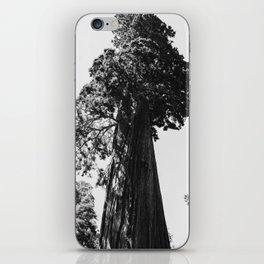 Sequoia National Park VI iPhone Skin