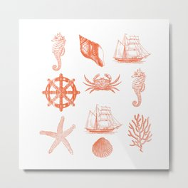 Marine Life 3 Metal Print