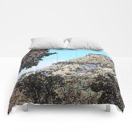 Autumn's Edge Comforters