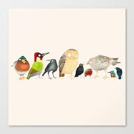 Woodland Bird Collection Canvas Print