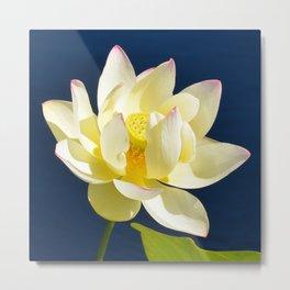 Lotus Flower by Teresa Thompson Metal Print