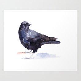 Crow #3 Art Print