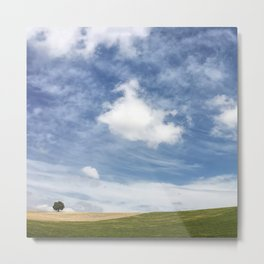 Andalusian field planted in spring Metal Print