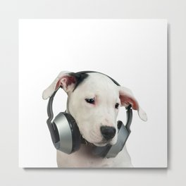 Sad puppy with headphones Metal Print