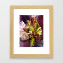 Iris Abstraction #100 Framed Art Print