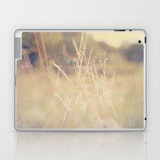 Hazy Days of Summer Laptop & iPad Skin