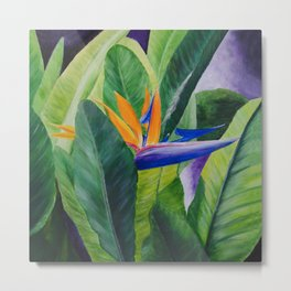 Bird of Paradise Painting by Teresa Thompson Metal Print