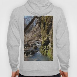 Alone in Secret Hollow with the Caves, Cascades, and Critters, No. 7 of 20 Hoody
