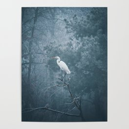 Snow Crane Poster