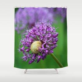 Allium Flower Shower Curtain