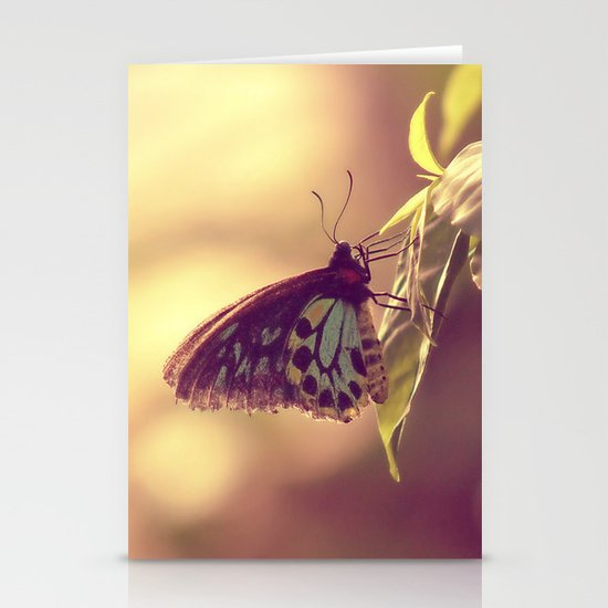 Butterfly 02 Stationery Cards