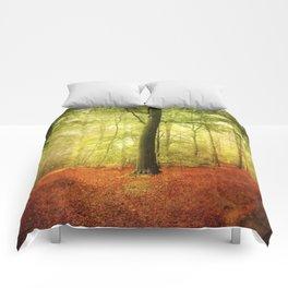 Beech tree forest glow Comforters