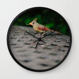Female Cardinal // Ohio Wall Clock