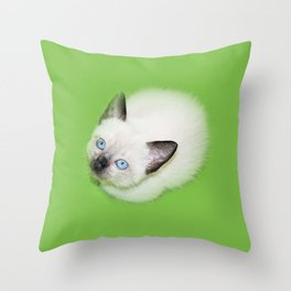 Siamese Kitten Cat snow white blue eye Throw Pillow