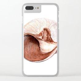 Watercolor Seashell Painting on White 5 Minimalist Coast - Sea - Beach - Shore Clear iPhone Case