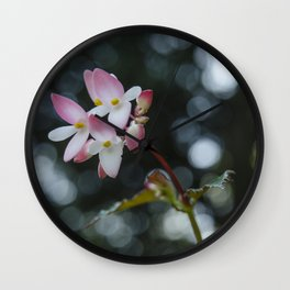 The Curious Pink Wall Clock