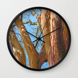 MADRONA TREE BY THE SEA Wall Clock