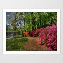 Magical Gardens Art Print