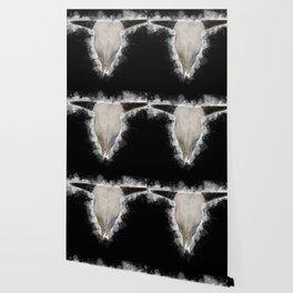 Bull Skull Black Background Wallpaper