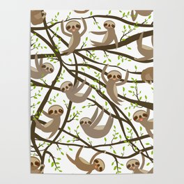 funny and cute smiling Three-toed sloth on green branch tree creeper Poster