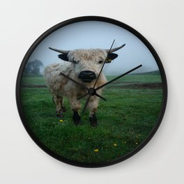 Young White High Park Cattle Wall Clock