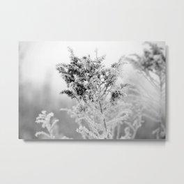 Winter Fairyland Metal Print