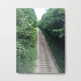 Railway in summer Metal Print