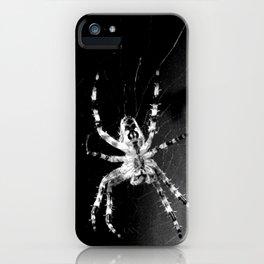 Spider in Amsterdam iPhone Case