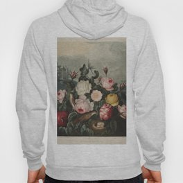 Thornton, Robert John (1768-1837) - The Temple of Flora 1807 - Roses Hoody