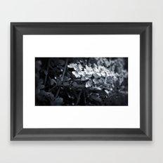 Florette Framed Art Print
