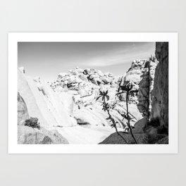 Buttermilk B/W Art Print
