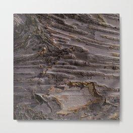 Silver Birch Bark in colour by Teresa Thompson Metal Print