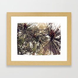 Forest rain drops Framed Art Print