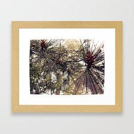 Forest rain drops Framed Art Print