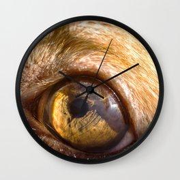 Eye details of a brown dog II Wall Clock