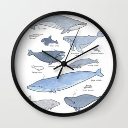 Whales Dolphins & Porpoises Wall Clock
