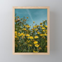 You're Among the wildflowers field of yellow daisies Framed Mini Art Print