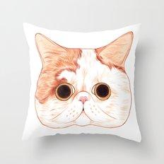 Exotic Shorthair Throw Pillow
