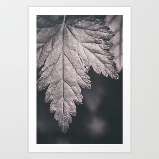 Black and White Forest Leaf Art Print